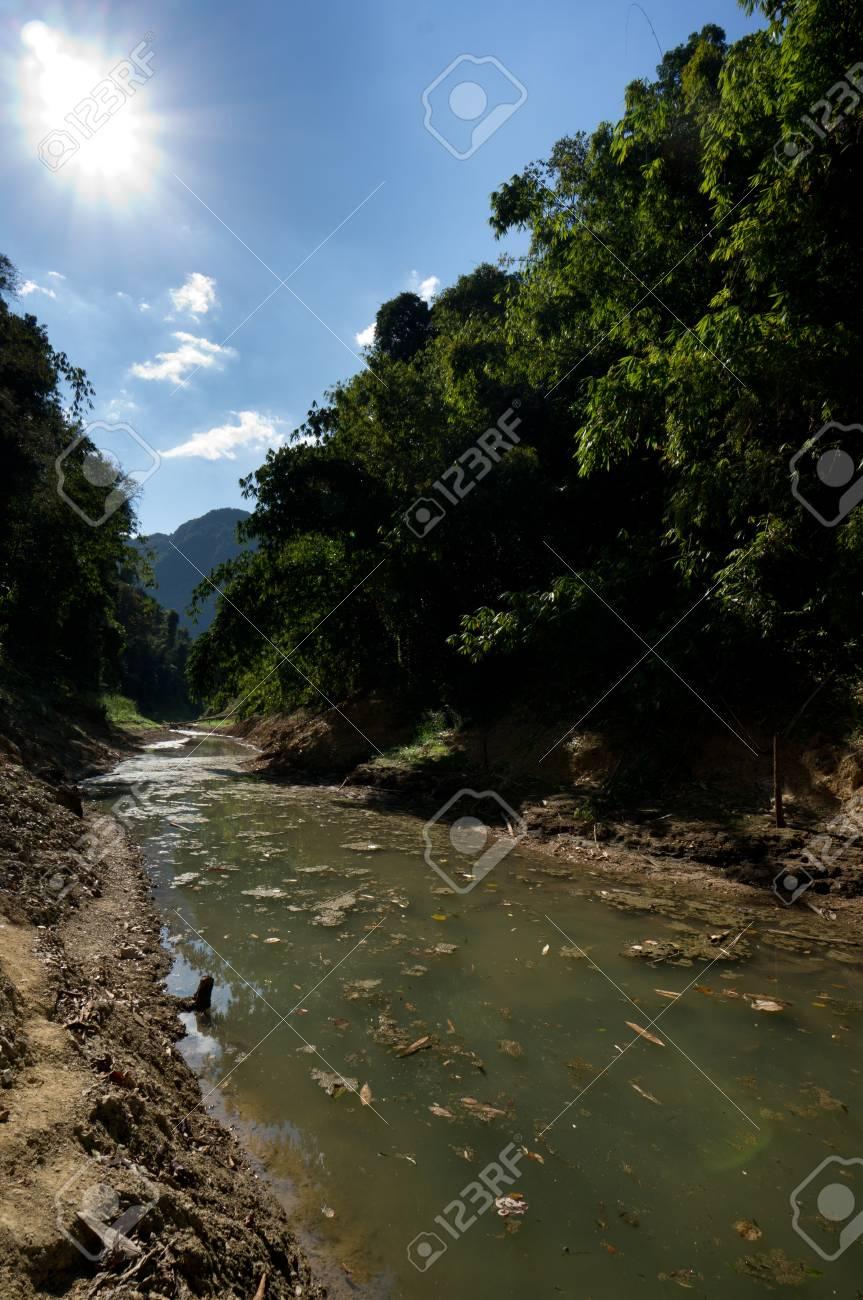 River at Khao Sok National Park, Thailand Stock Photo - 18644174
