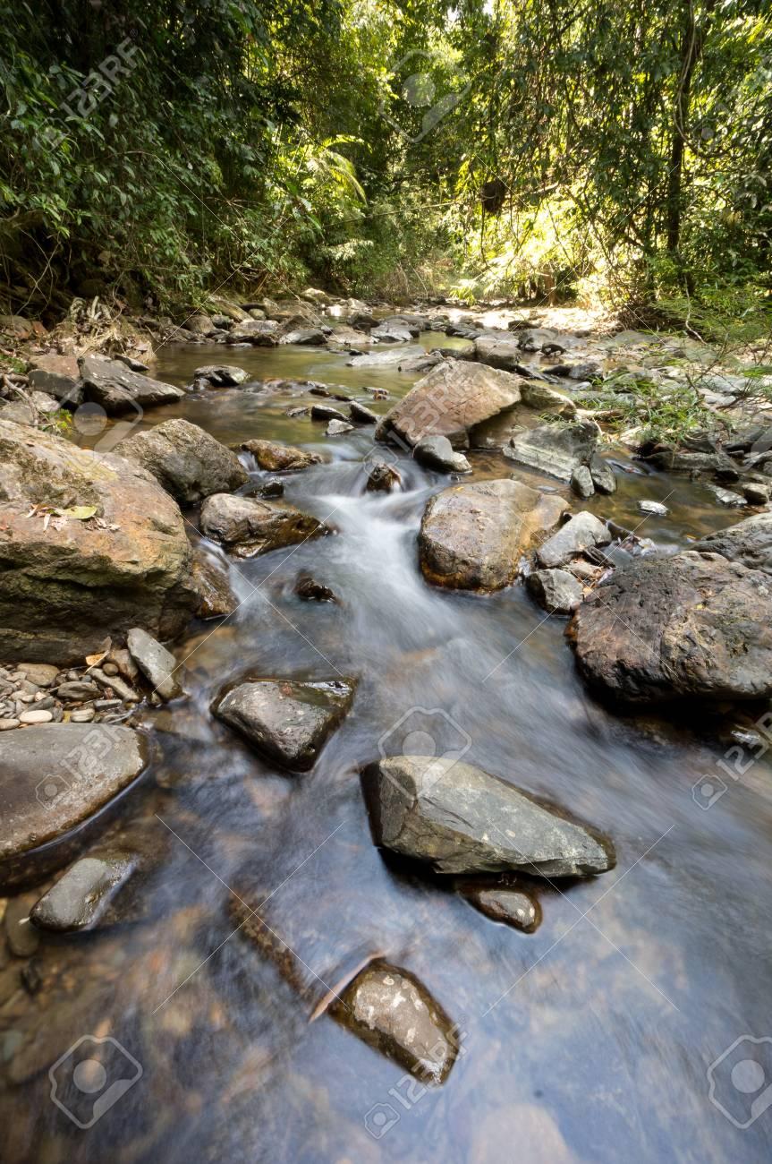Freshwater at Khao Sok National Park, Thailand Stock Photo - 18647683