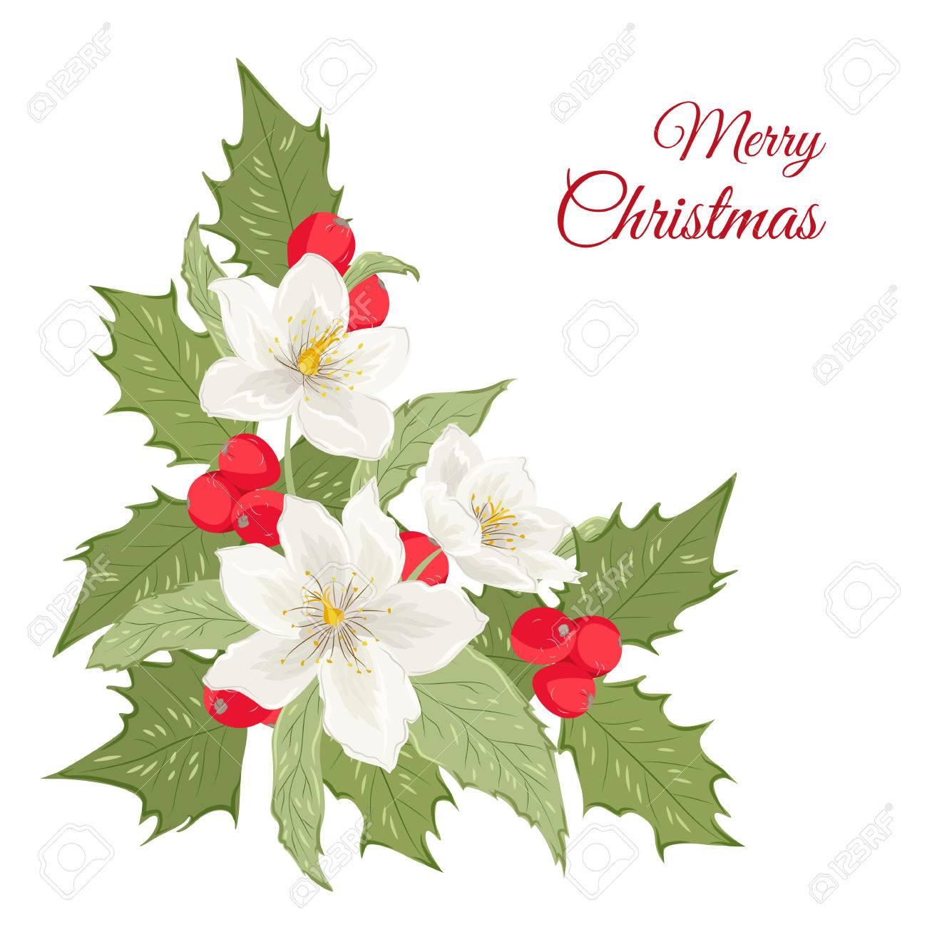 Isolierte Bouquet Von Nieswurz Winter Rosenblüten Und Mistel Holly ...