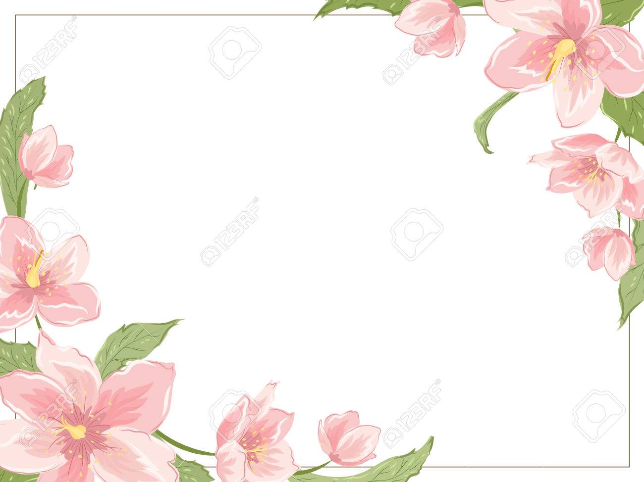 Corner frame template with sakura magnolia hellebore flowers corner frame template with sakura magnolia hellebore flowers on white background horizontal landscape orientation stopboris Choice Image