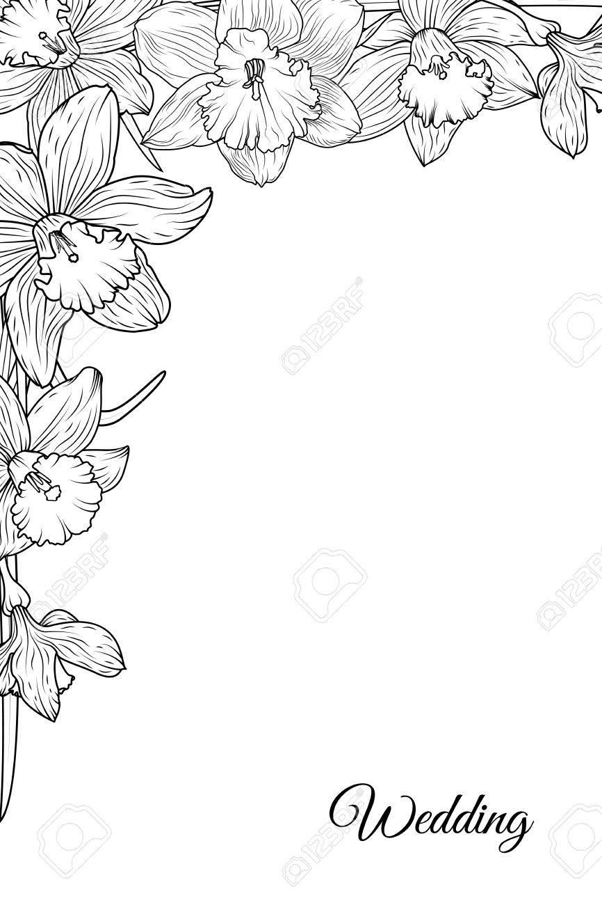 Narzisse Narzisse Blühende Blumen Ecke Rahmen Rahmen Vorlage ...
