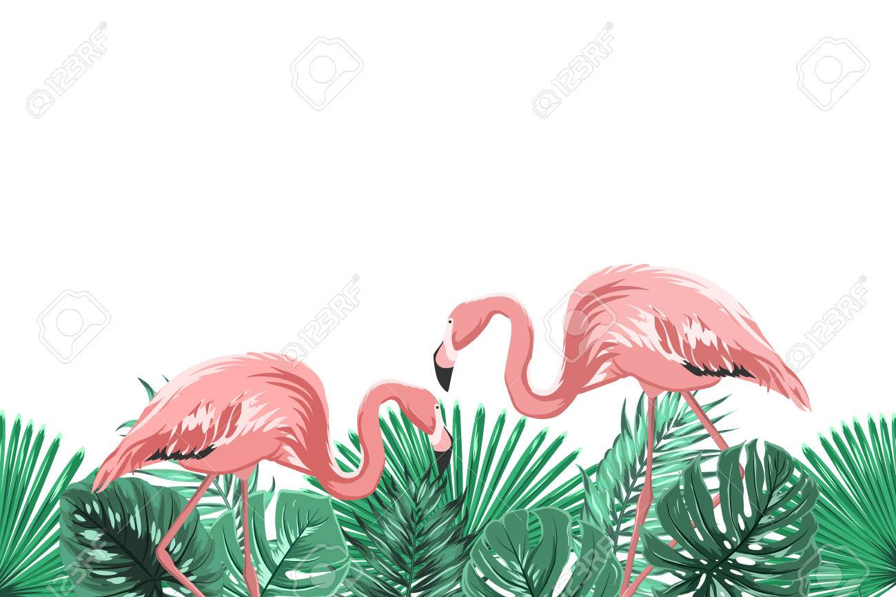 Tropical greenery rain forest leaves and exotic pink flamingo birds couple in natural habitat. Horizontal landscape footer border design element. Vector design illustration. Archivio Fotografico - 75834230