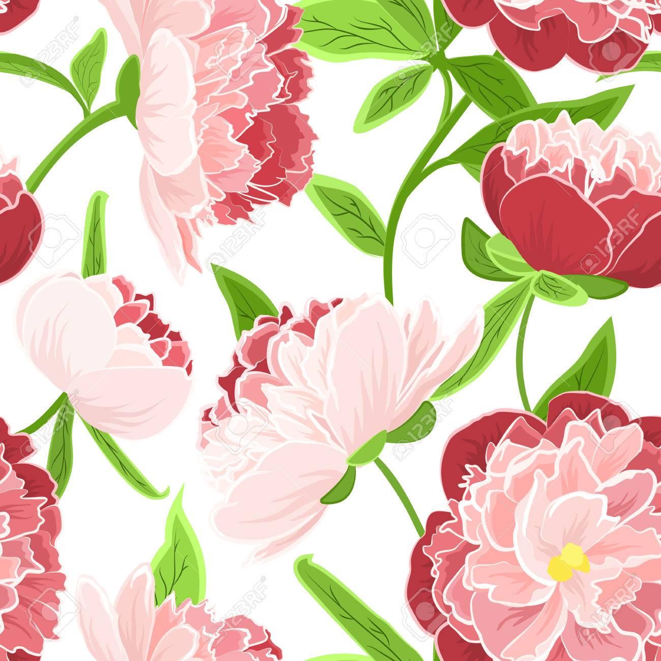 Flores Color De Rosa De La Peonia Realista Detallado Dibujo