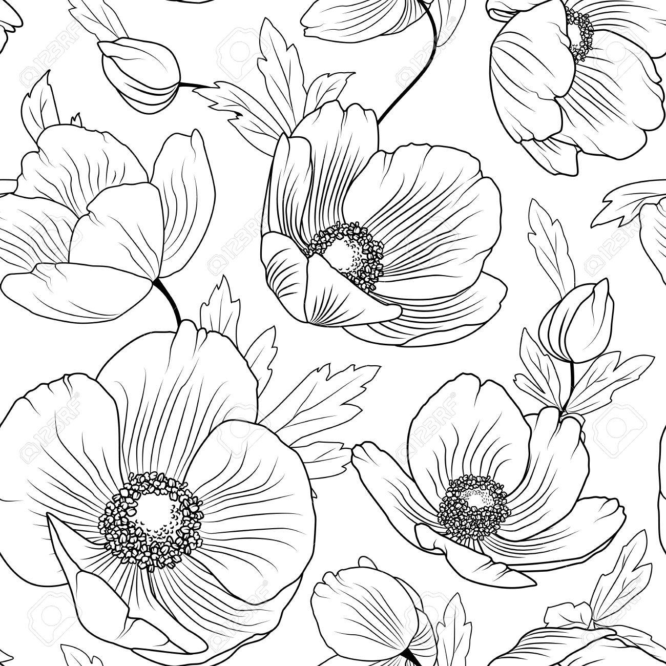 Poppy flowers buds leaves seamless floral pattern texture detailed black outline drawing on white