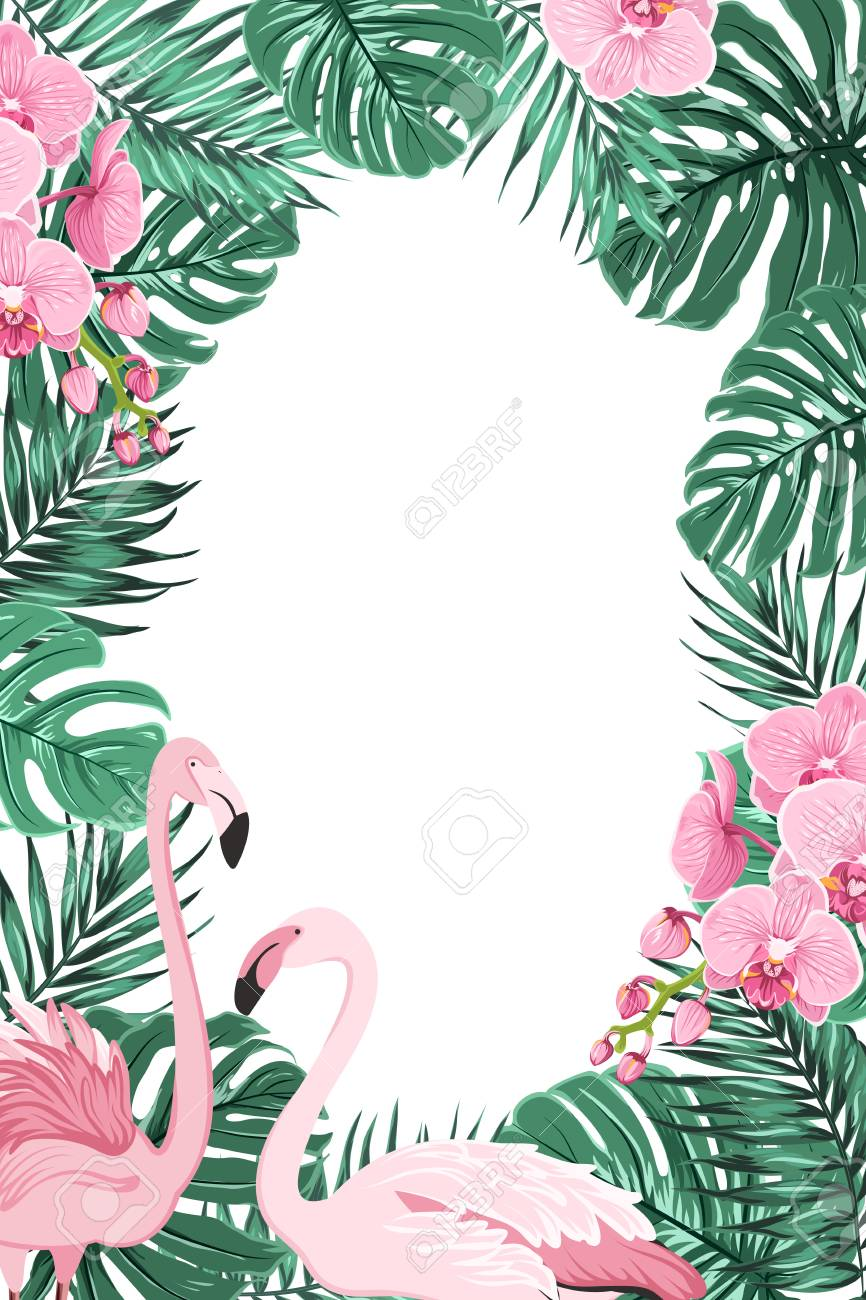 tropical jungle rainforest green palm tree monstera leaves orchid