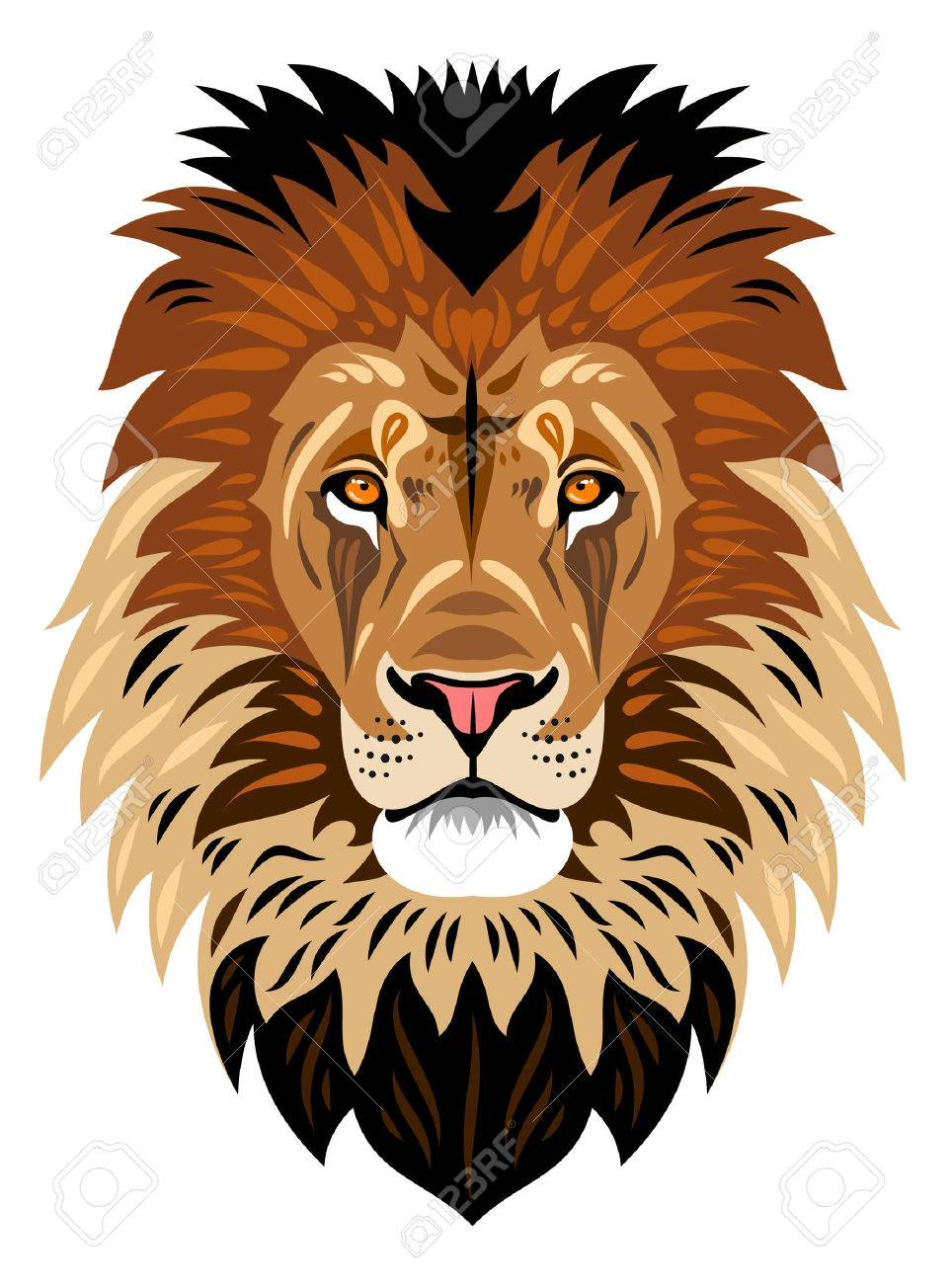 The muzzle of a lion - 53425802