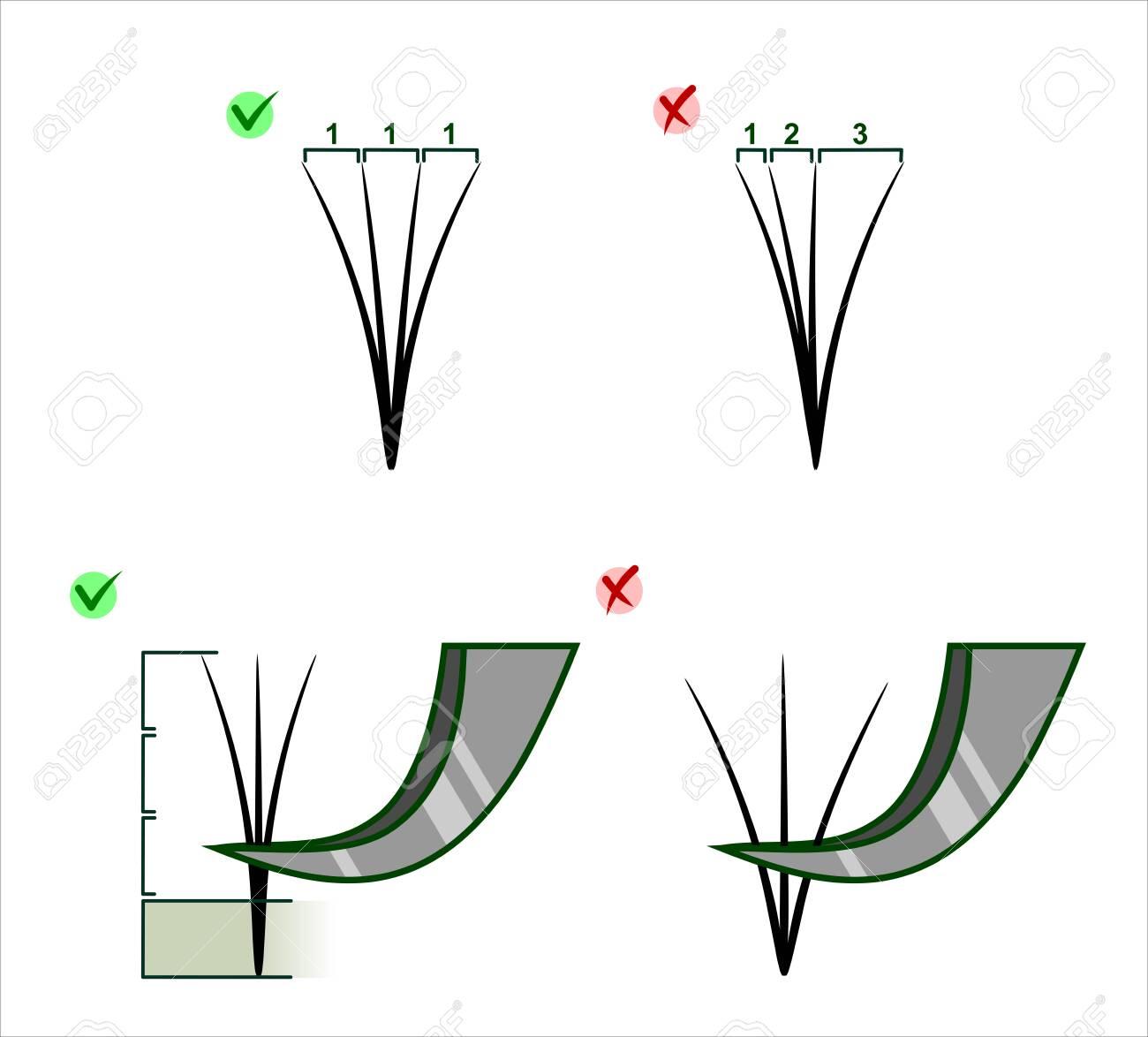 Types of forceps for building eyelashes - 130800599