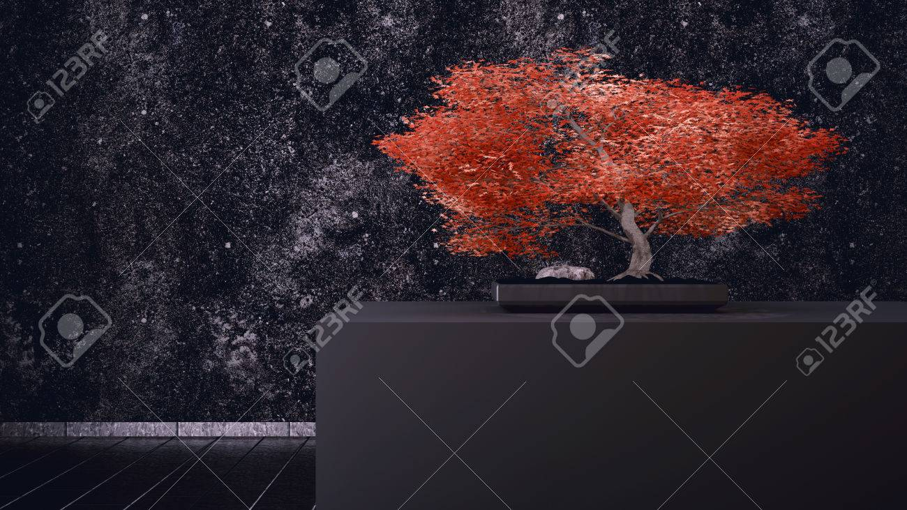 Red Bonsai in front of a black wall Standard-Bild - 27576957
