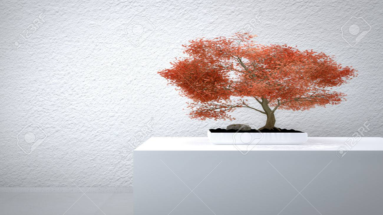 Red Bonsai in front of a white wall Standard-Bild - 27576961