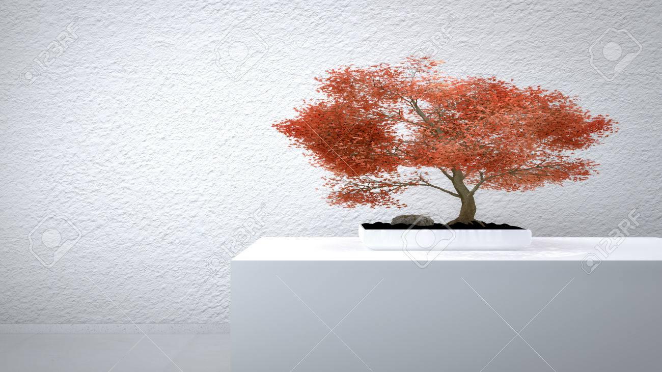 Red Bonsai vor einer weißen Wand Standard-Bild - 27576961