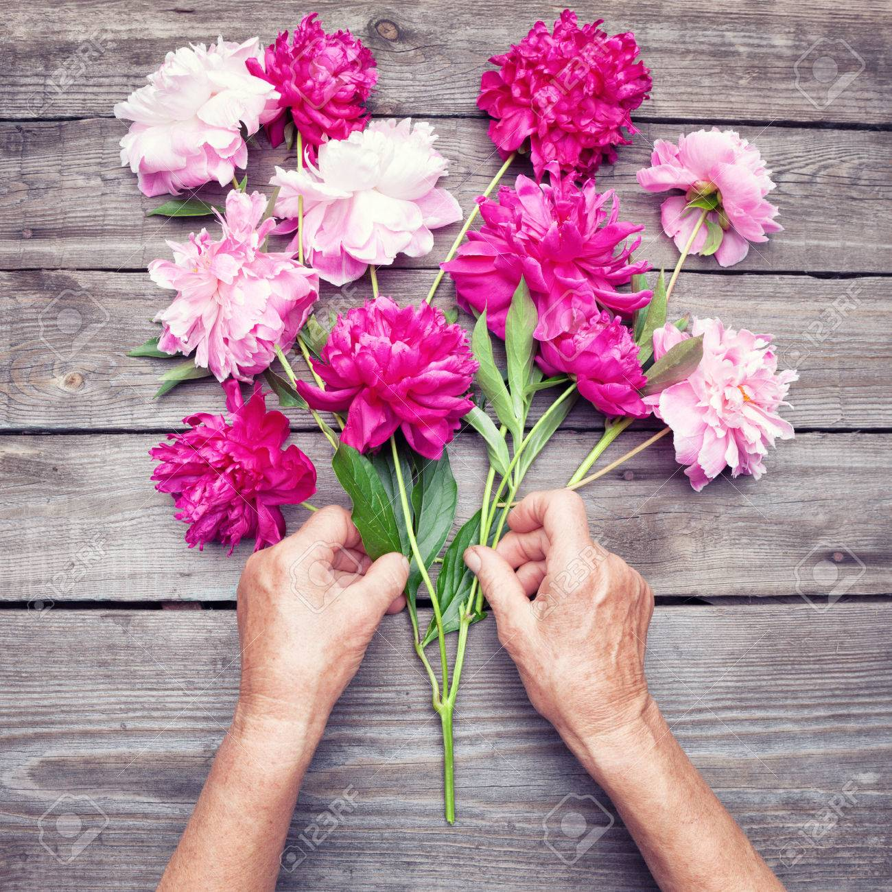 Womans hand making a bouquet of red and pink peony flowers stock stock photo womans hand making a bouquet of red and pink peony flowers top view flat lay izmirmasajfo