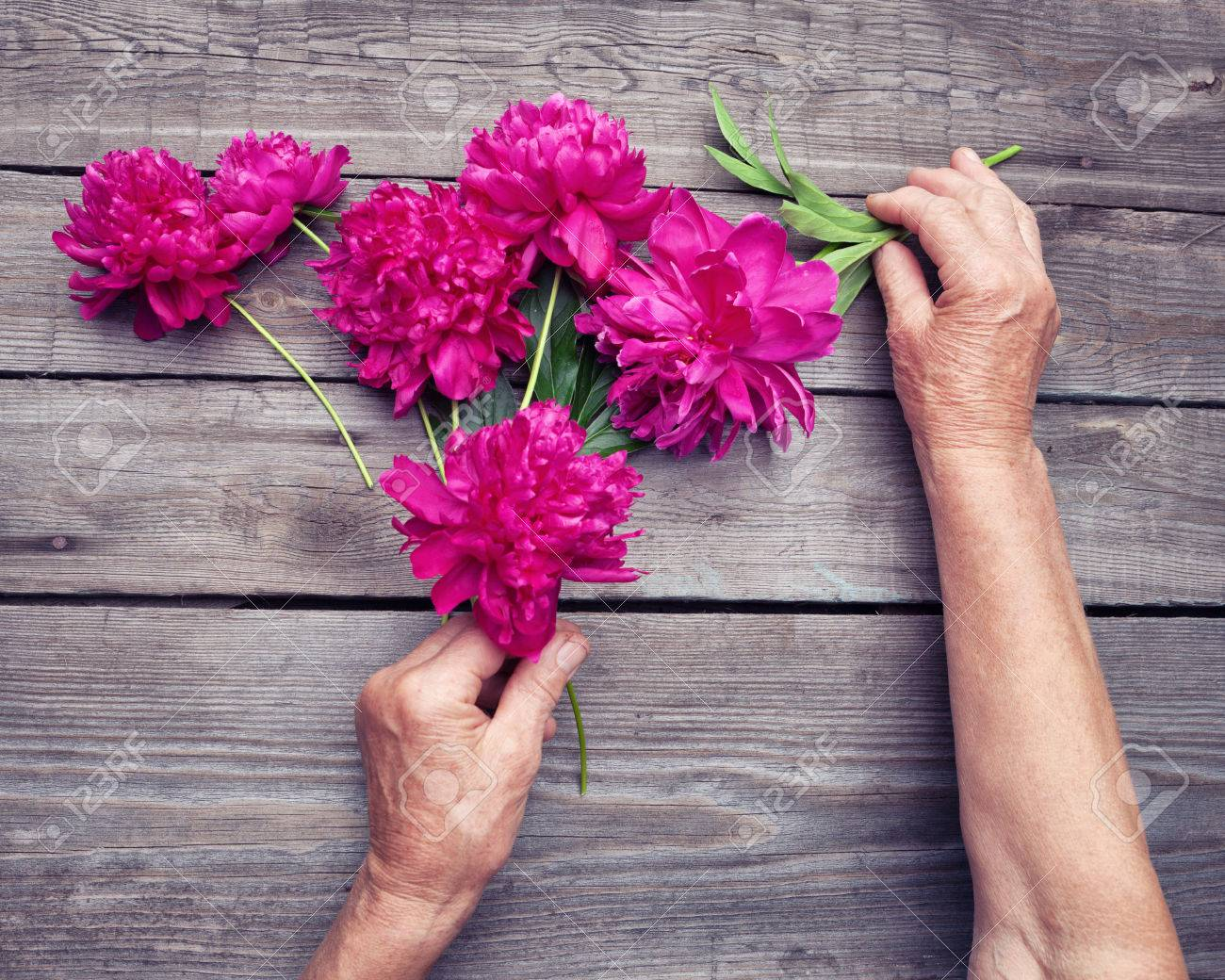 Flat lay top view of elderly womans hand making a bouquet of top view of elderly womans hand making a bouquet of red peony flowers izmirmasajfo Gallery