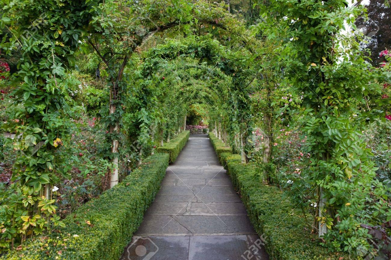 garden pathway. Garden Pathway With Foliage Arbor Stock Photo - 11136794
