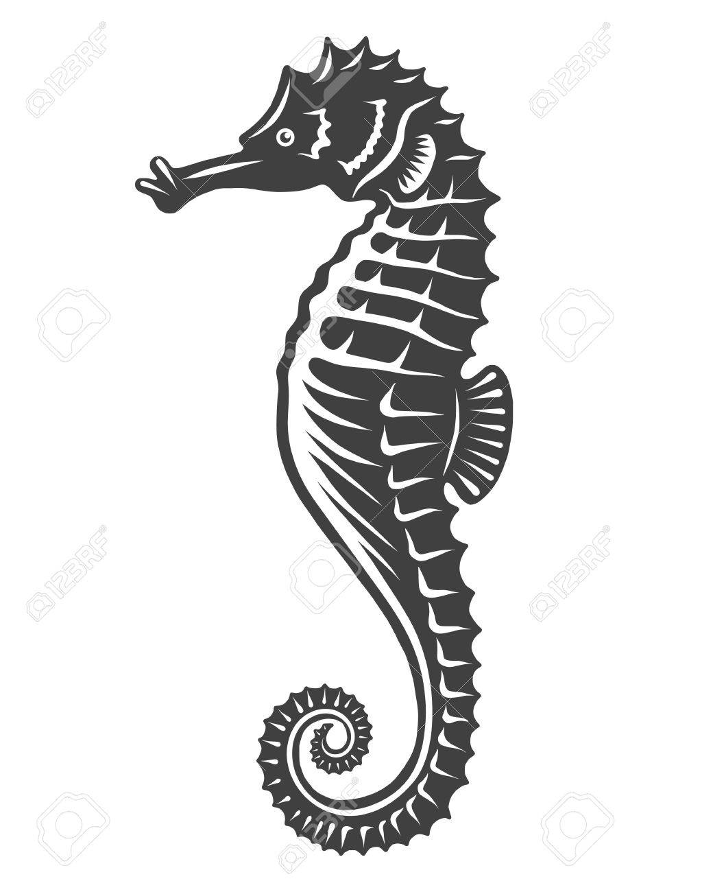 Monochrome Sea Horse Icon Isolated On White Background Royalty Free Cliparts Vectors And Stock Illustration Image 69102830