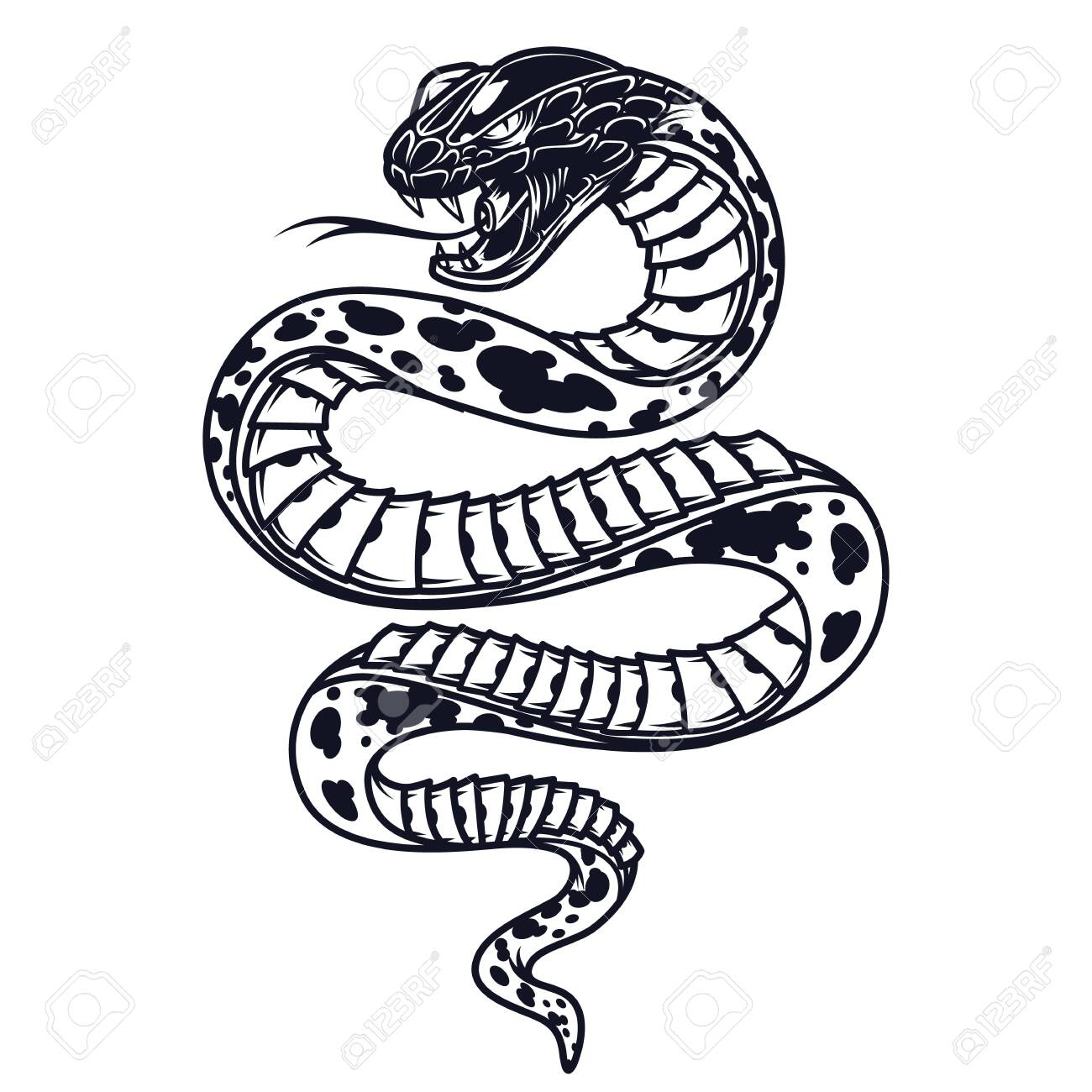 Vintage poisonous snake template in monochrome style isolated vector illustration - 131930050