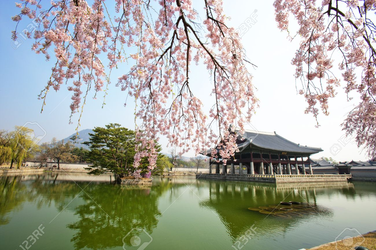 Image result for gyeongbokgung palace spring
