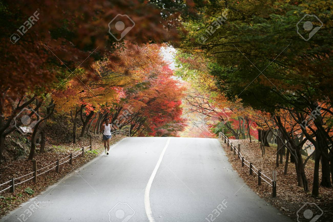 """Autumn landscape with temples in south korea,naejangsa"""""""" - 24026861"""