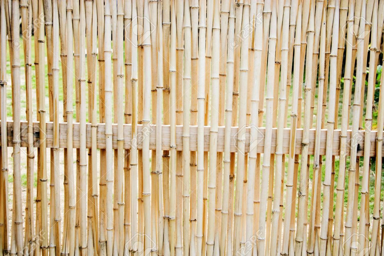Bamboo Door Stock Photo   24283445