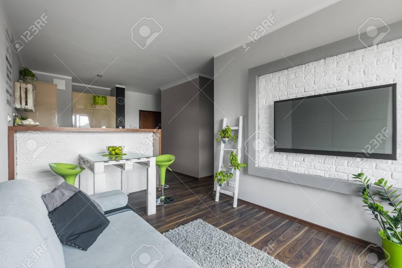 Funktionelle Licht Moderne Wohnung Mit Offener Küche Und Ein ...