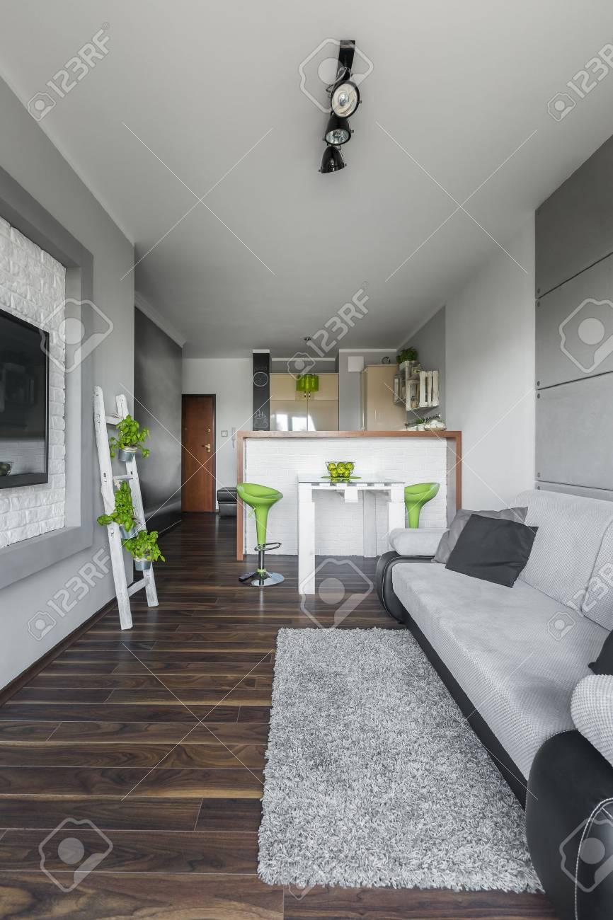 Einfache Stil Wohnung Mit Offener Küche Und Grauen Wohnzimmer Mit TV ...