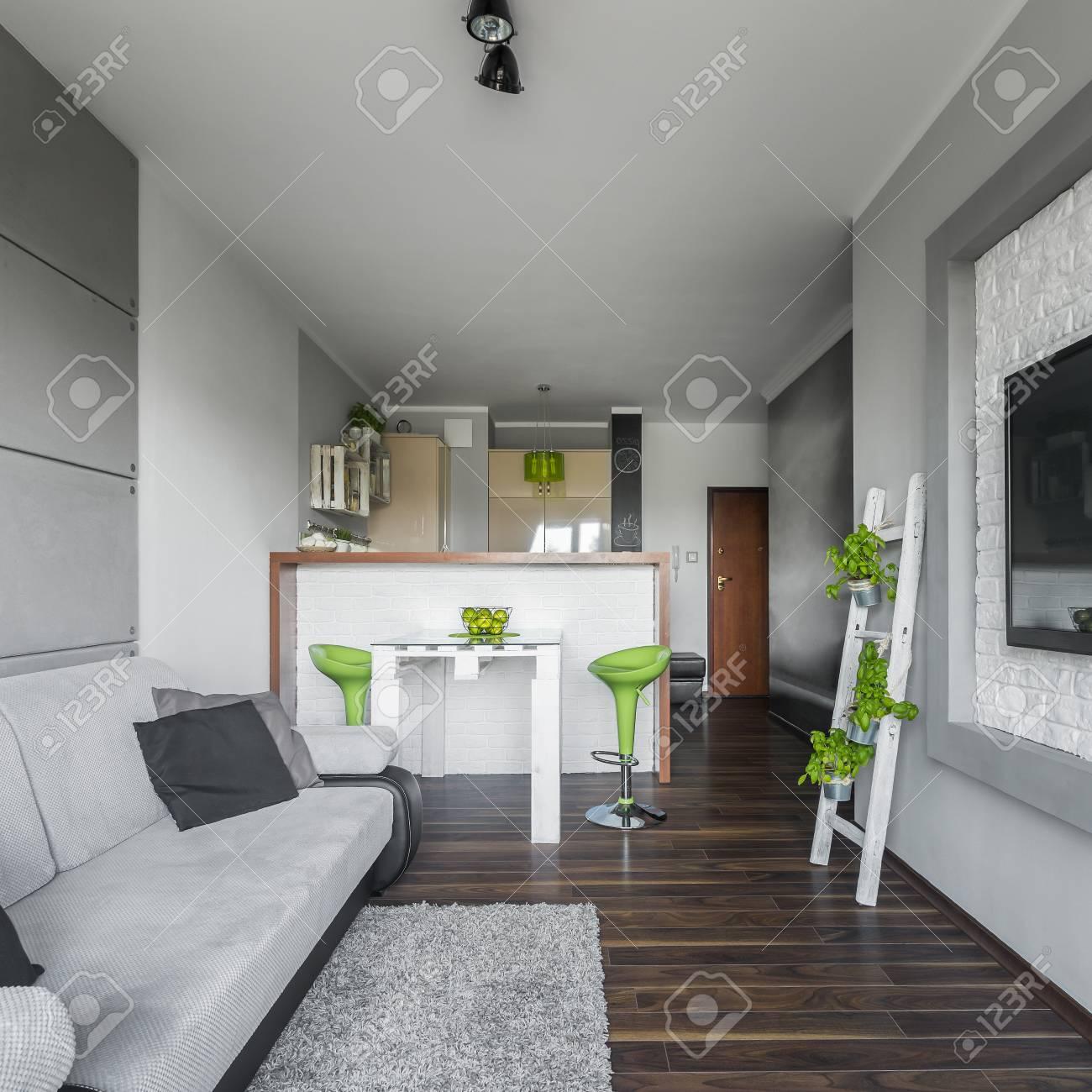 Moderne Wohnung Interieur Für Junge Menschen Mit Küche Und ...