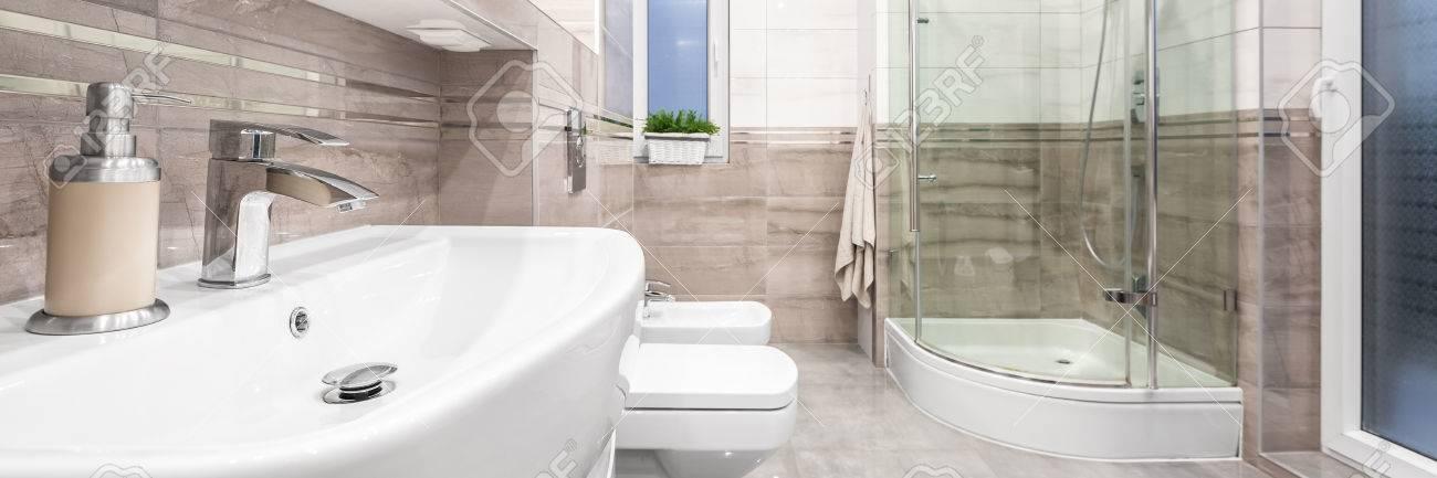 Salle de bain spacieuse et élégante avec lavabo blanc classique, toilette,  bidet et grande douche, panorama