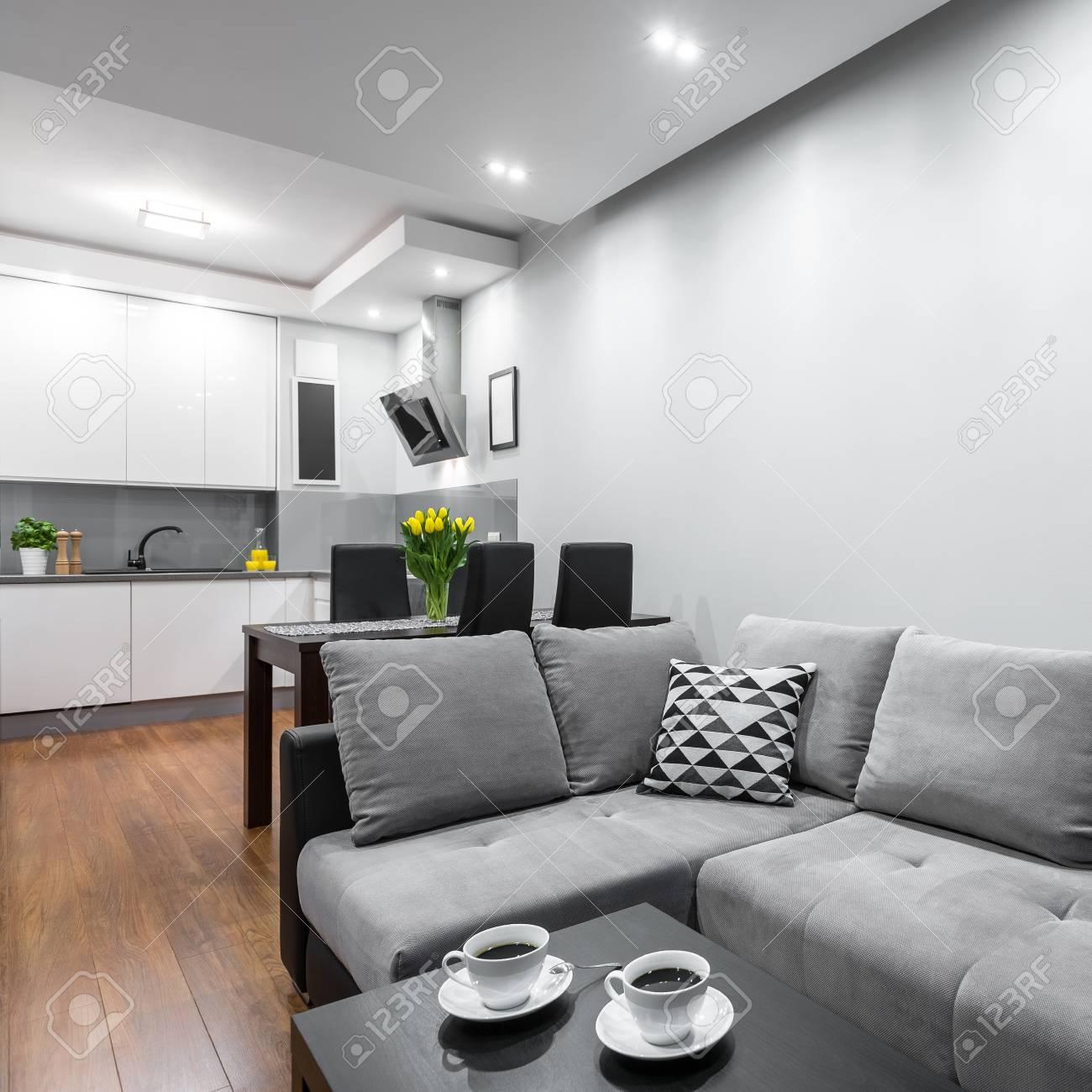 Maison Moderne Avec Un Canapé, Une Table Basse, Salle à Manger ...