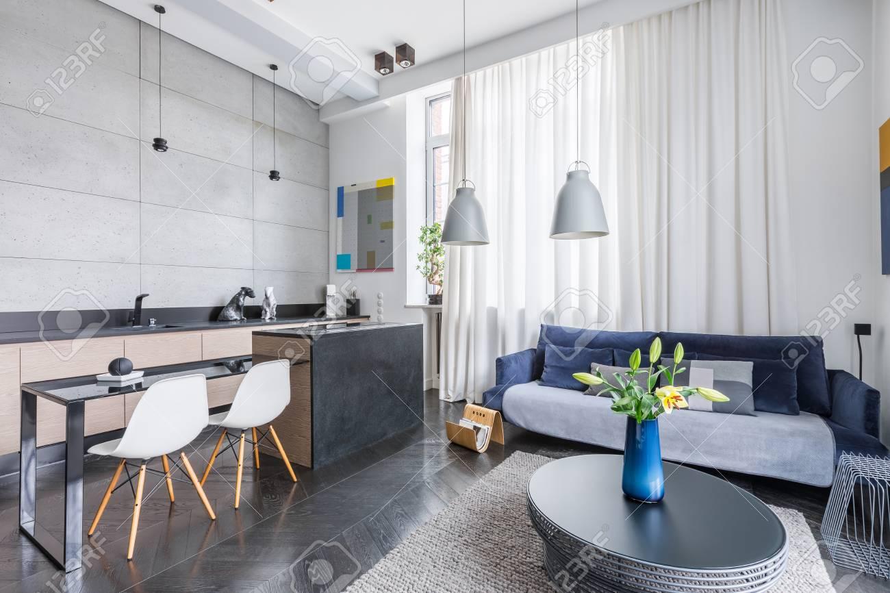 Intérieur de style moderne avec salon et cuisine combo