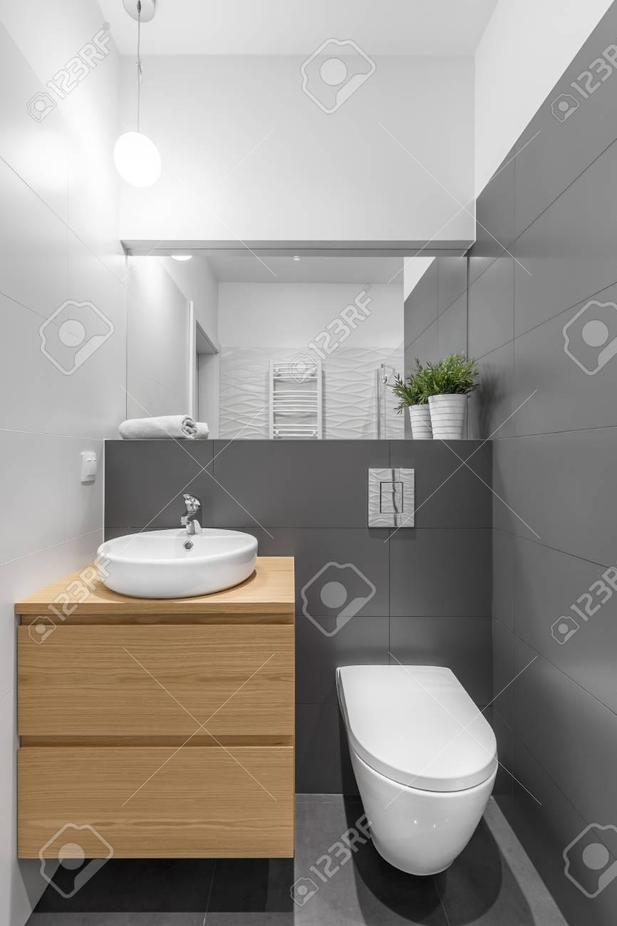 Pequeno Bano Gris Y Blanco Con Lavabo E Inodoro Fotos Retratos