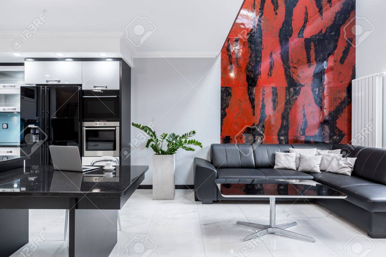 Modern black and white home with living room open to kitchen
