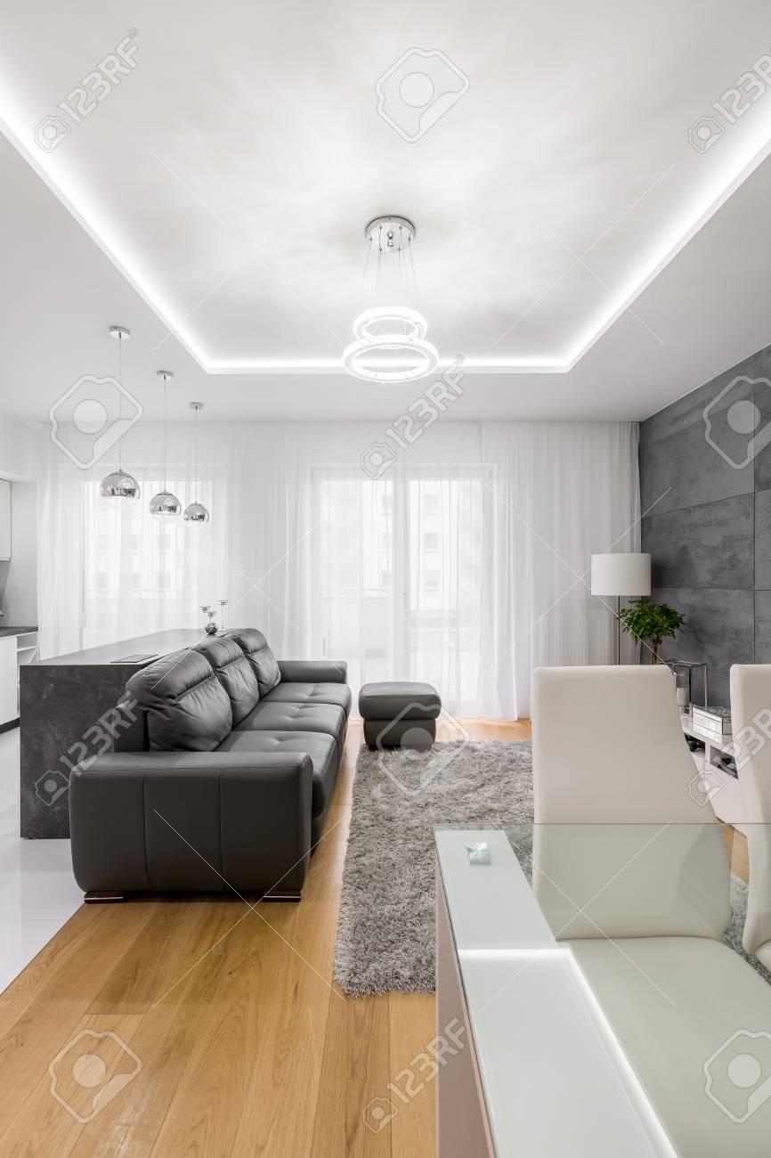 Salon moderne gris et blanc avec canapé, pouf et plafond abaissé
