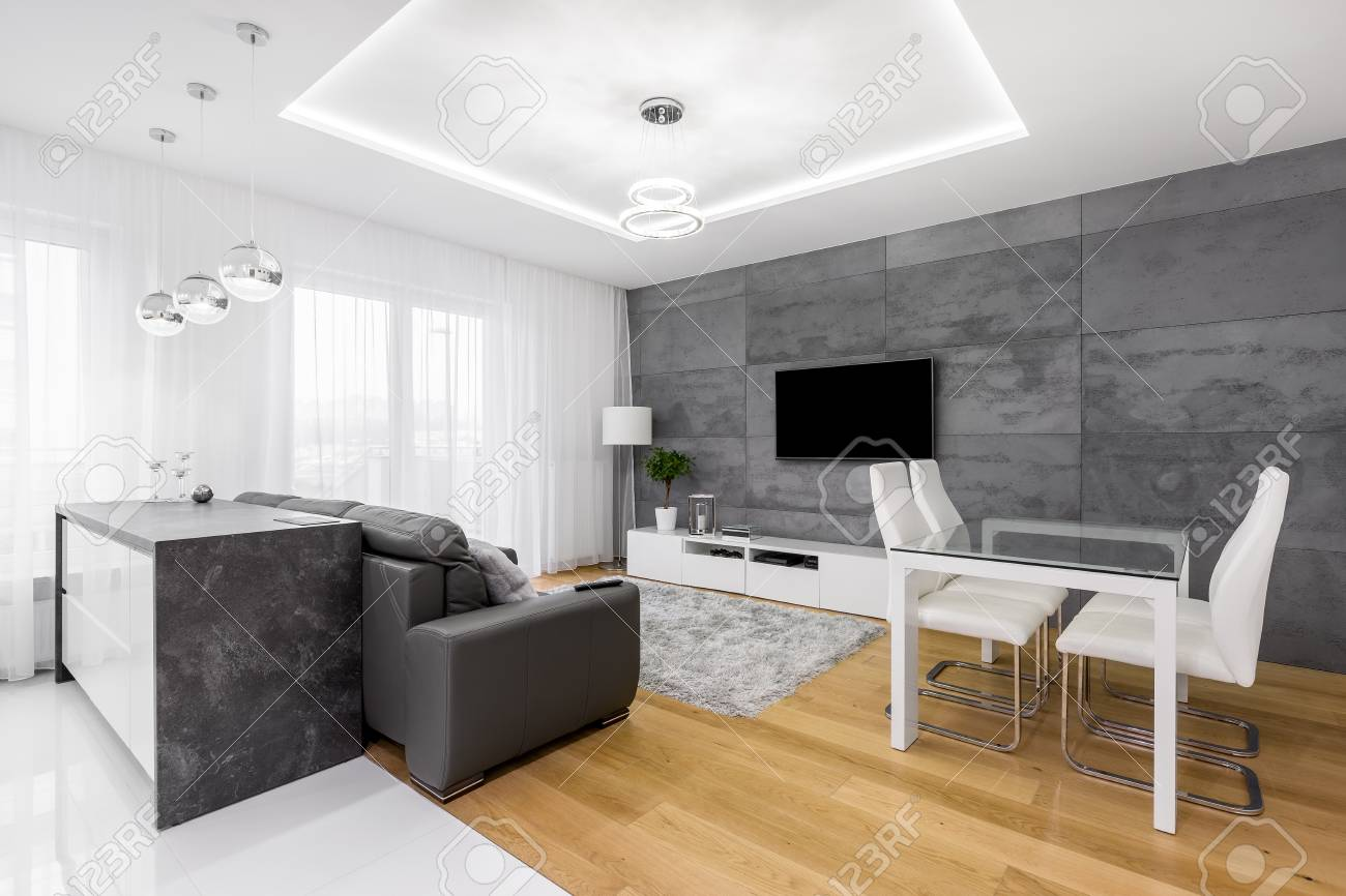 Gray and white, modern apartment with sofa, tv, chairs, table,..