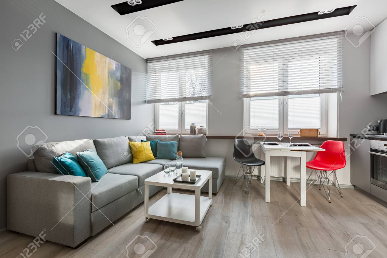 Modern studio apartment in gray with big sofa and open kitchen
