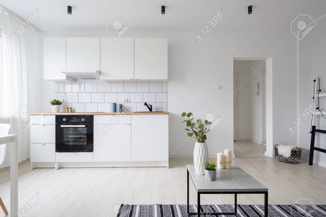 Modern and stylish studio apartment in white with functional..