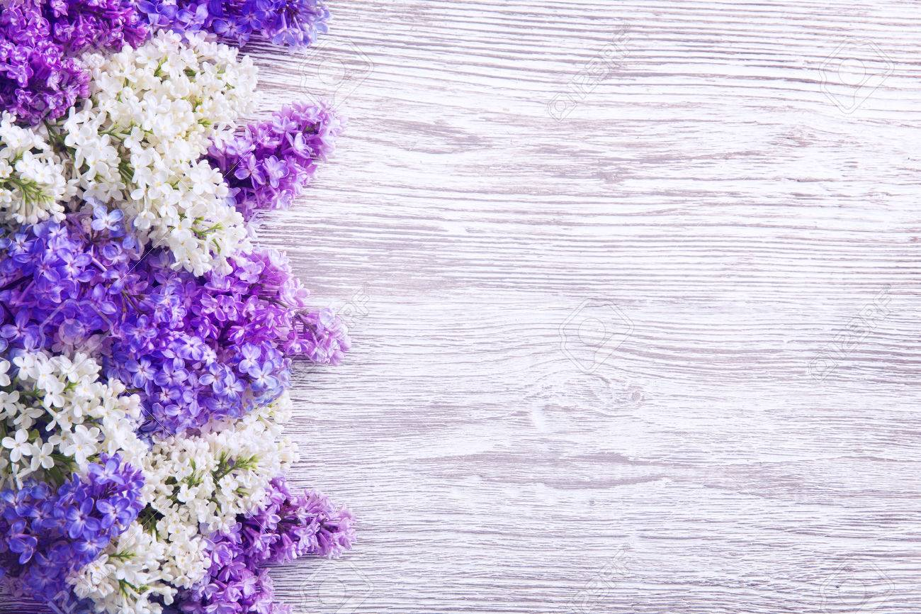 Lilac Flower On Wood Background Blooms Pink Flowers In Left Stock