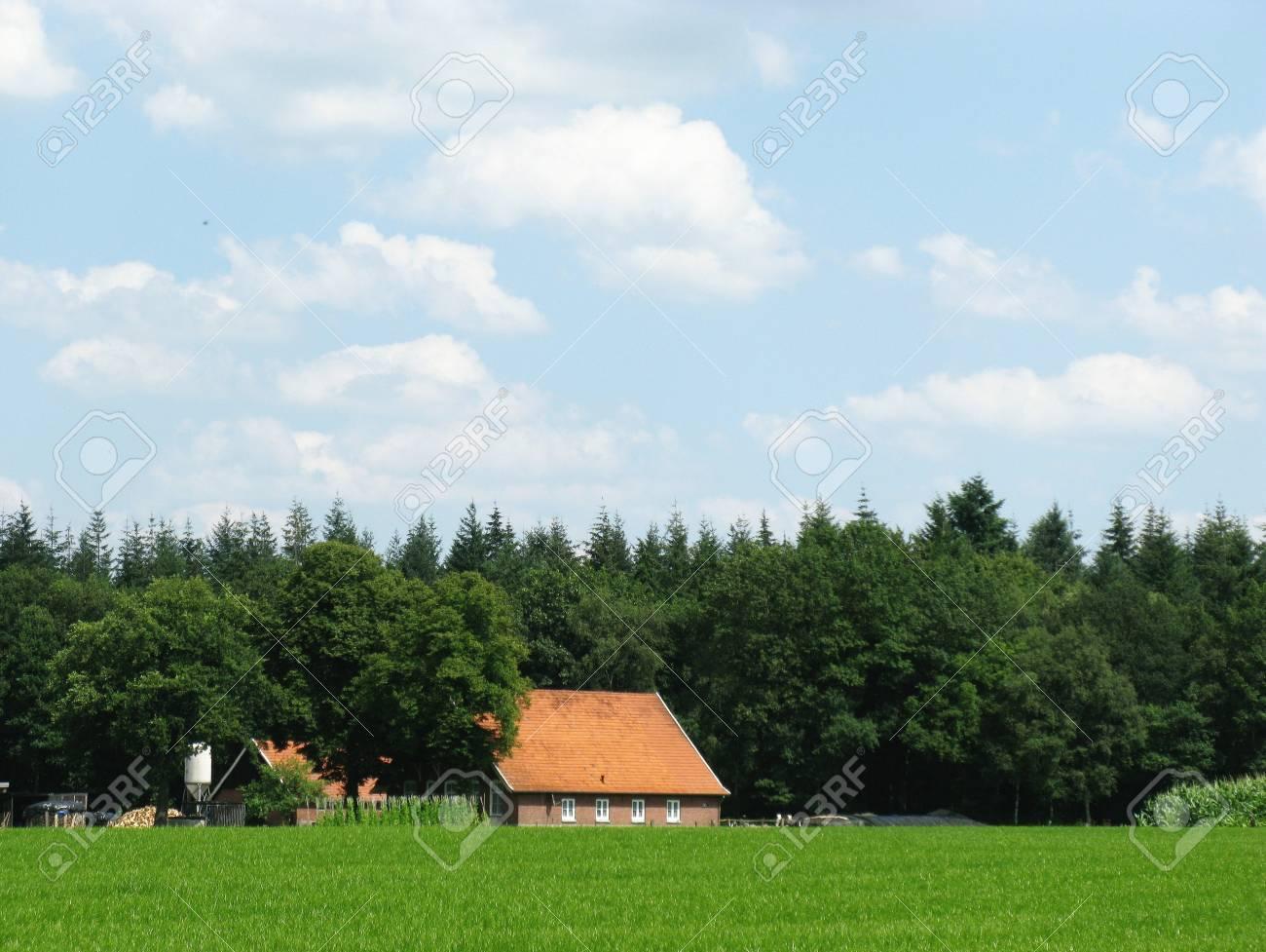 A farmhouse with grassland Stock Photo - 5329813