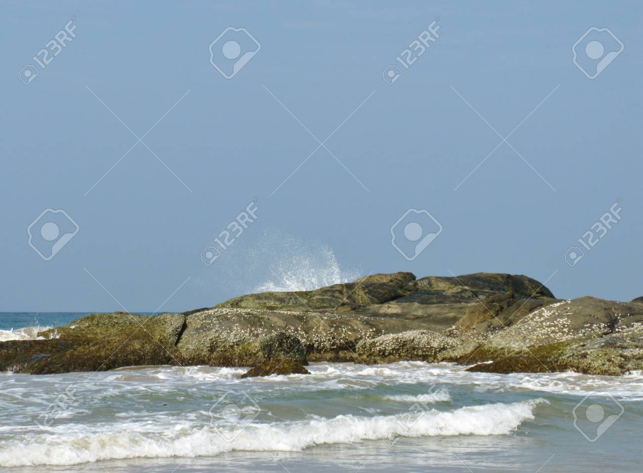 The beach with the rocks and vegetation and the Indian ocean in Sri Lanka Stock Photo - 18288687