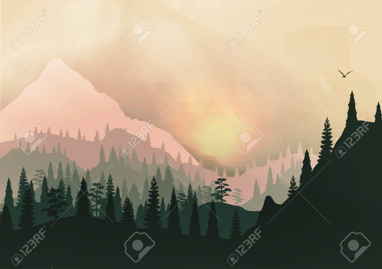 Sunset Panorama of Mountain Ridges and Pine Forest - 30489514