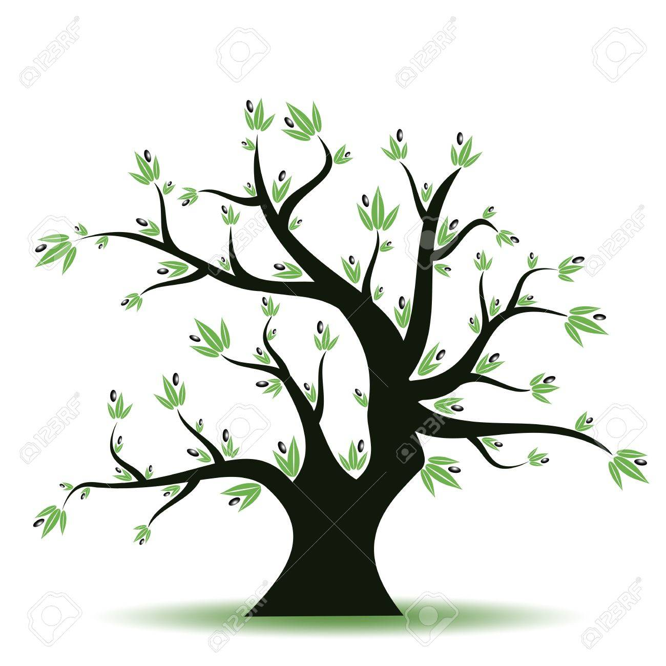 Abstract olive tree on white background Stock Photo - 9679032