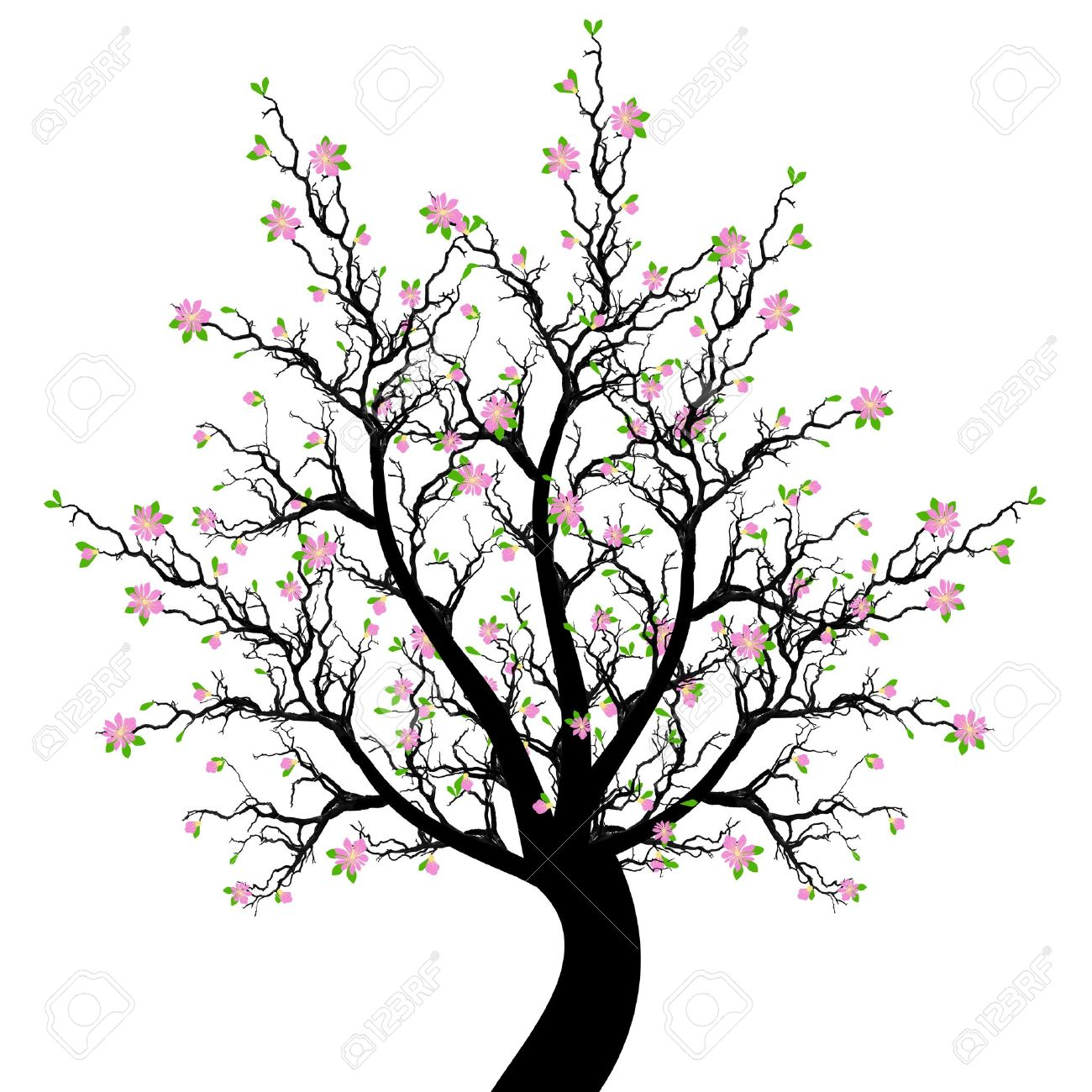 Beautiful Spring Blossom Tree Isolated On White Background Stock Vector    12636327