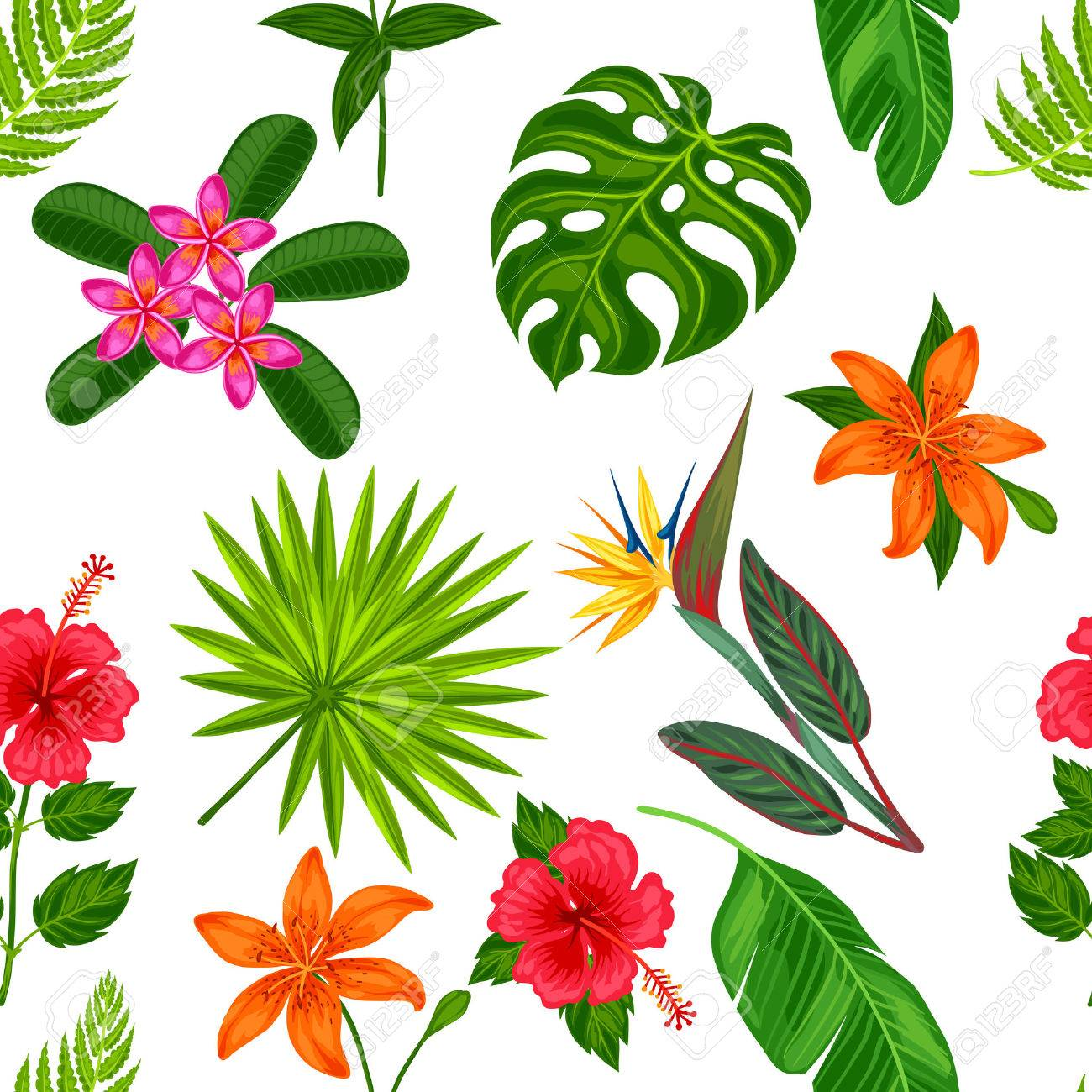 Seamless pattern with tropical plants, leaves and flowers. Background made without clipping mask. Easy to use for backdrop, textile, wrapping paper. - 55229909