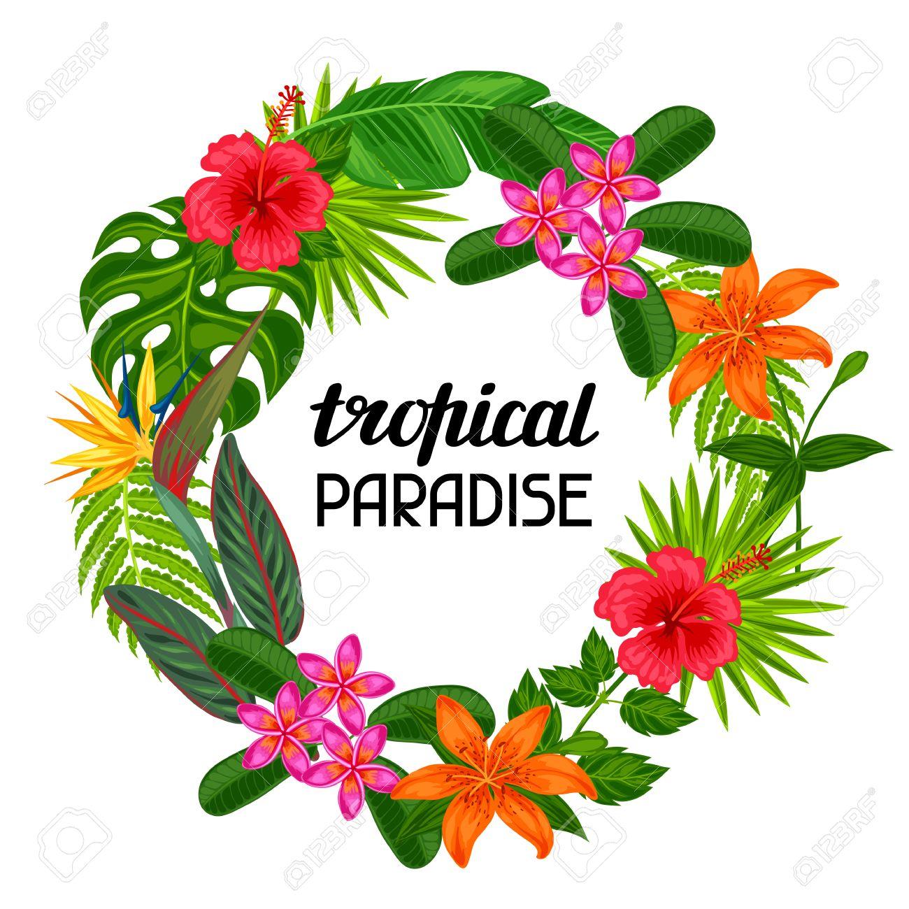 Tropisches Paradies Rahmen Mit Stilisierten Blättern Und Blüten ...