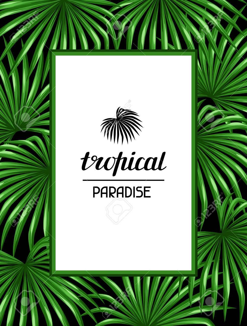 Paradies Karte Mit Palmen Blatter Dekorative Bild Tropischen Blatt