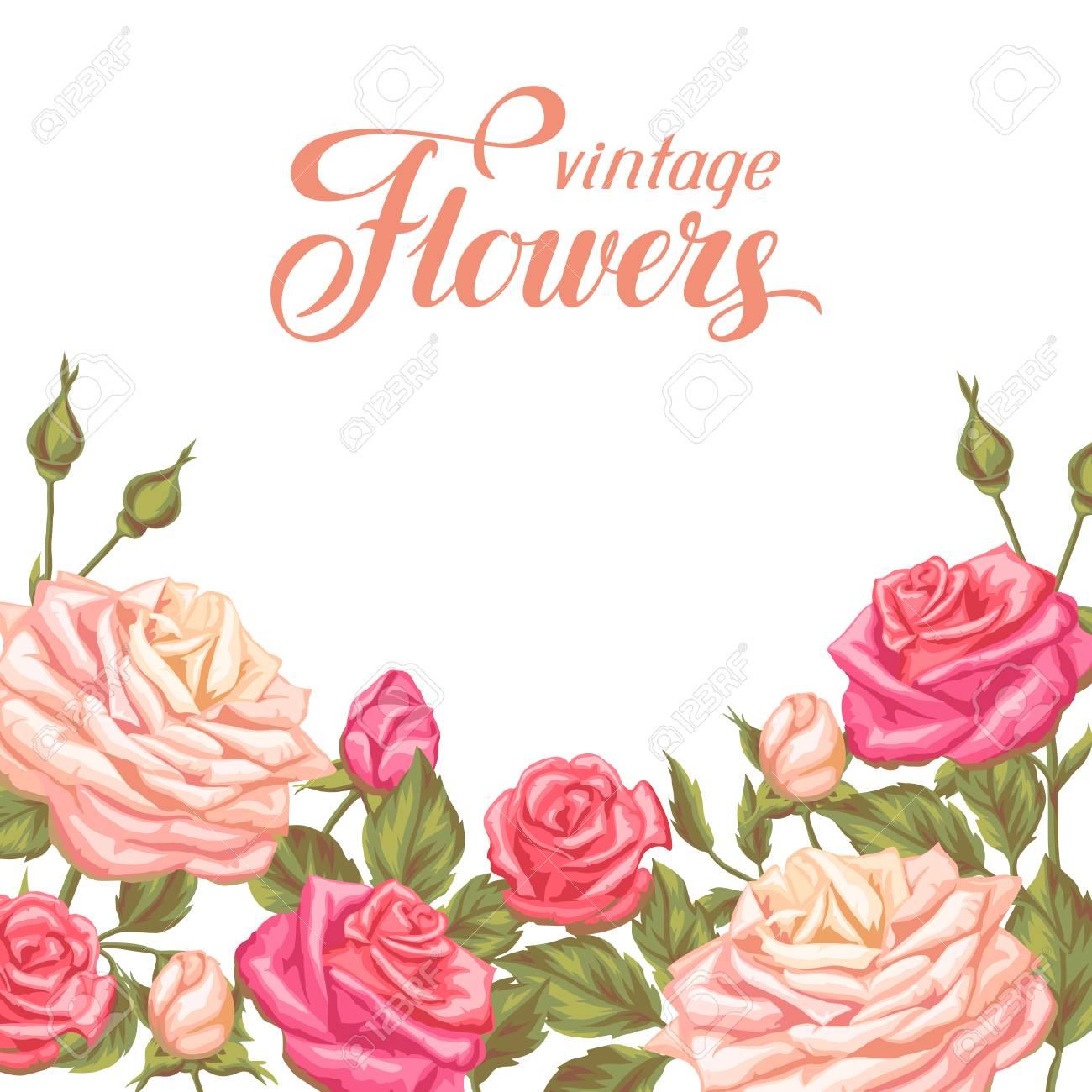 Invitation card with vintage roses decorative retro flowers invitation card with vintage roses decorative retro flowers image for wedding invitations romantic stopboris Images