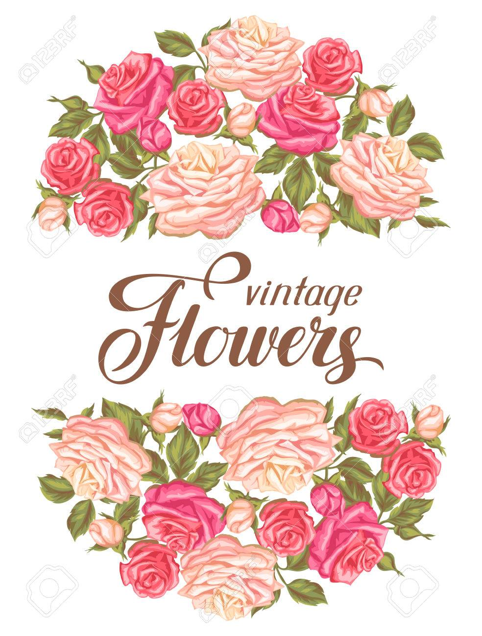 Invitation card with vintage roses decorative retro flowers invitation card with vintage roses decorative retro flowers image for wedding invitations romantic stopboris Image collections