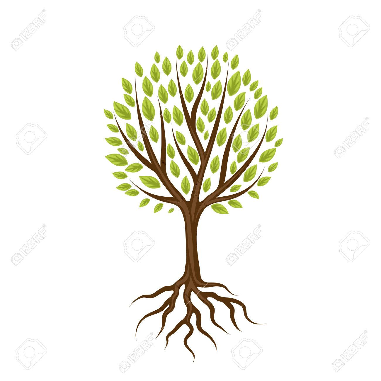 Abstract stylized tree with roots and leaves. Natural illustration. - 66760448
