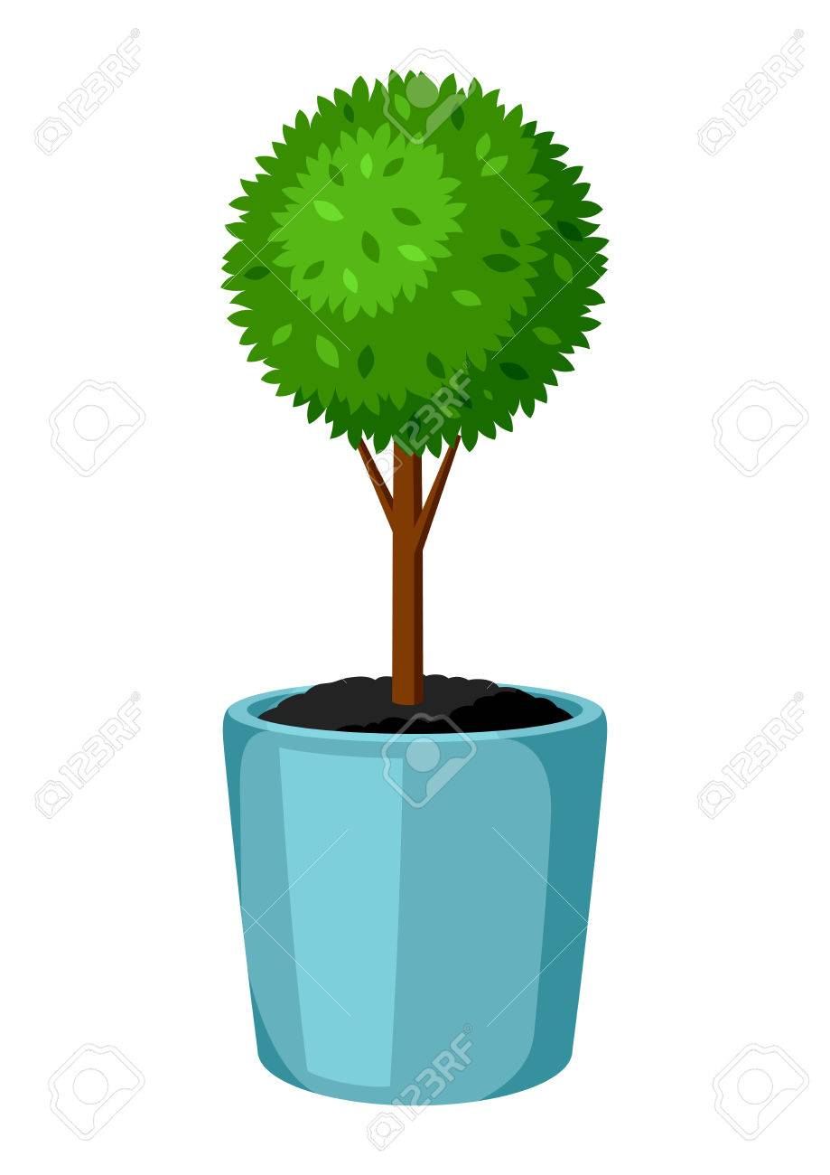 Boxwood Topiary Garden Plant Decorative Tree In Flowerpot Royalty Free Cliparts Vectors And Stock Illustration Image 74572242
