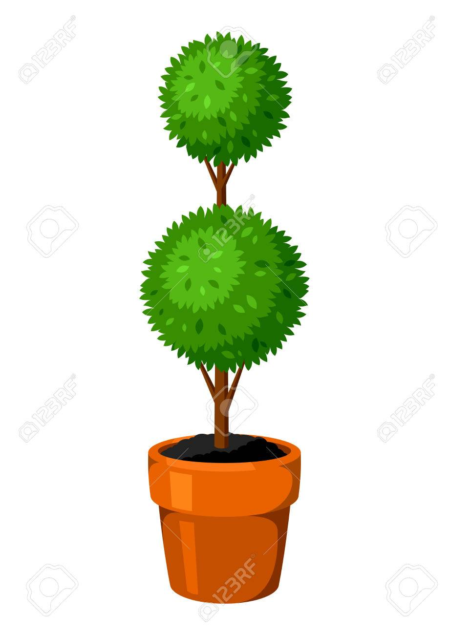 Boxwood Topiary Garden Plant Decorative Tree In Flowerpot Royalty Free Cliparts Vectors And Stock Illustration Image 74572272