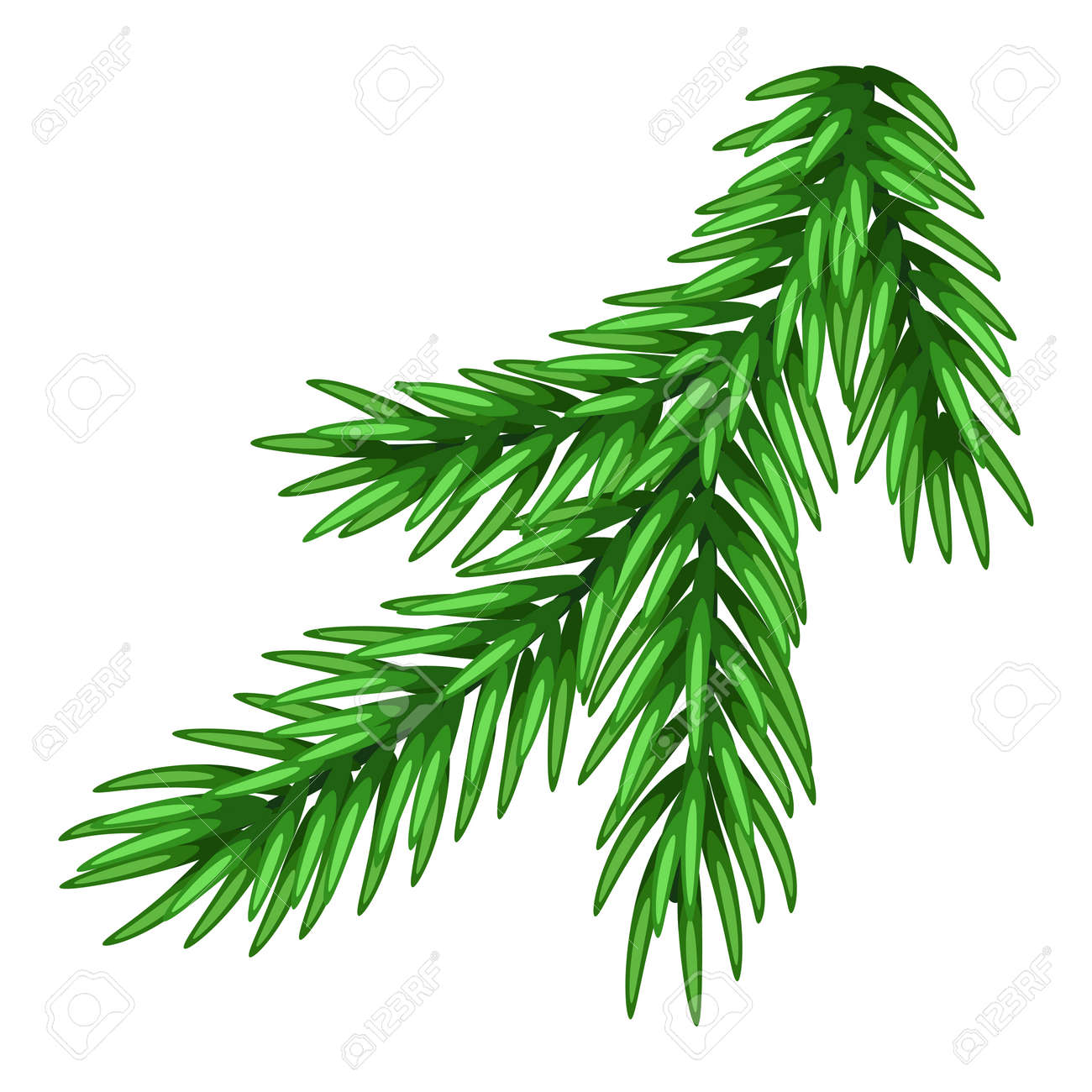 Illustration of spruce branch. Merry Christmas or Happy New Year decoration. - 154208376