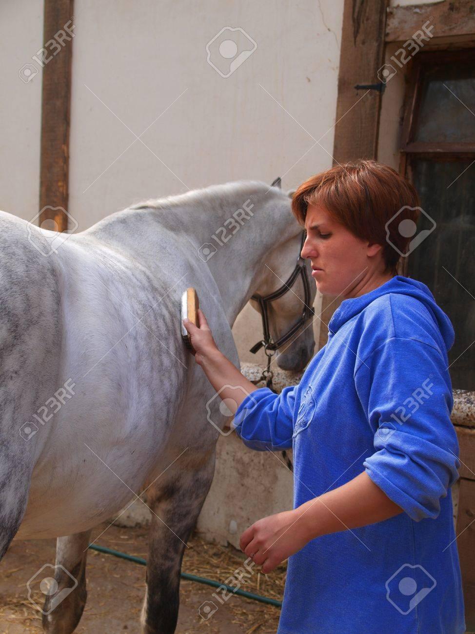 Woman cleans horse lattice Stock Photo - 18729790